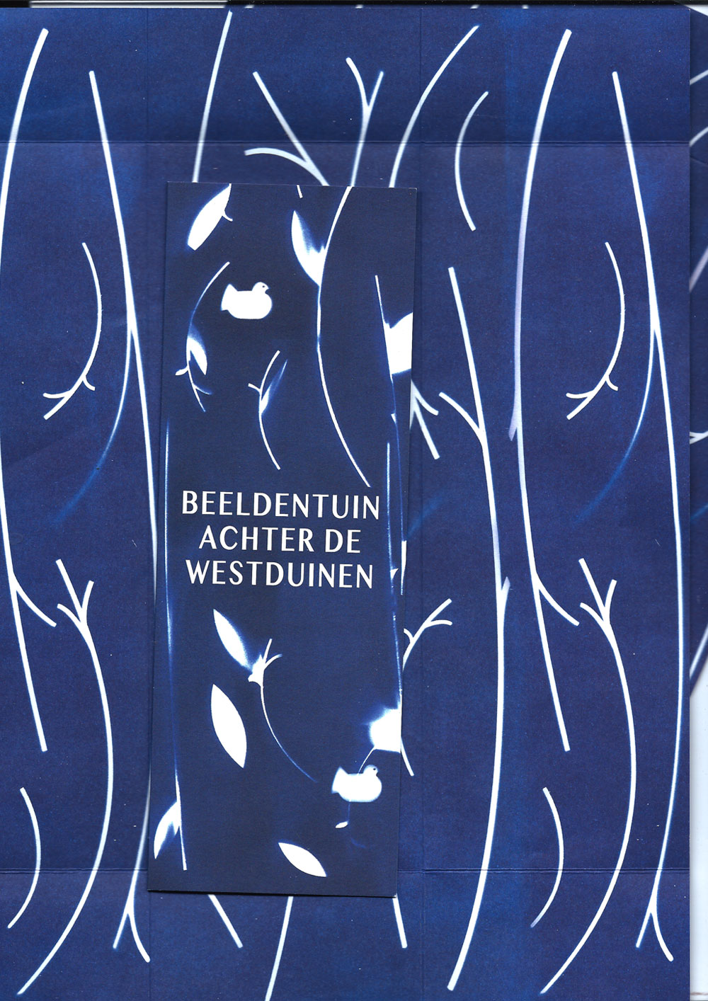 Timon-van-der-Hijden-ADW2-5